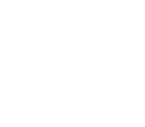 logo-25segib-slide